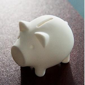 niceeshop(TM) Lovely Eco-friendly Penny Piggy Bank Cover Pig Shape Money Box Savings Cover