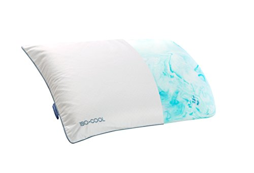 Isotonic Iso-Cool Therapure Traditional Bed Pillow (Iso Cool Pillow compare prices)