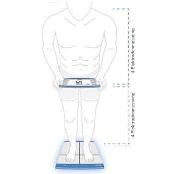 Oberkörper- und Unterkörpermessung