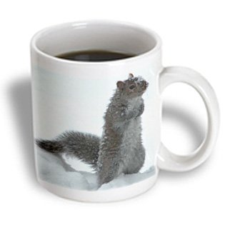 3Drose Cute Squirrel In The Snow Mug, 11-Ounce