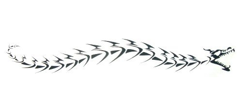 Dragon Fossil Armband Temporary Tattoos