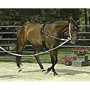 Perri's Pony Neoprene Training Surcingle, Black