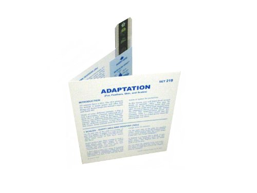 American Educational Microslide Adaptation Biosphere Lesson Set