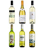 Modern Collection Mixed White Wine Dozen