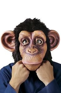 [Brand New Chimp Animal Monkey Ape Adult Mask] (Chimp Hands Costume)