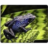 luxlady-gaming-mousepad-id-42958098-blu-poison-dart-frog-dendrobates-azureus-una-bella-tropicale-e-v