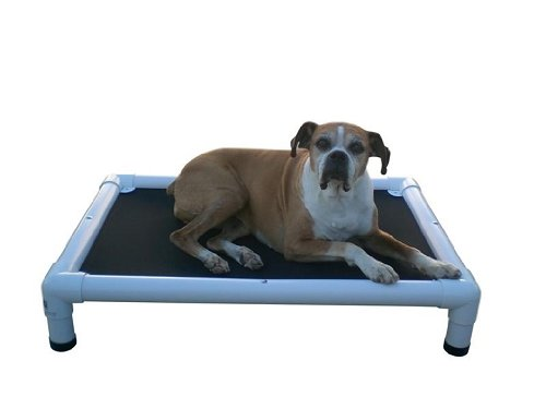 """results for """"Dog Beds Dog Cots Elevated Dog Beds Healthy Dog Bed"""