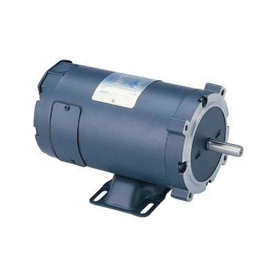 Leeson 12 Volt Dc Motor - 1/3 Hp, 1750 Rpm, Model# 108046