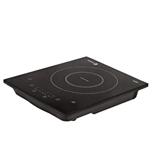 Fagor 670040240 110-Volt Portable Induction Cooktop