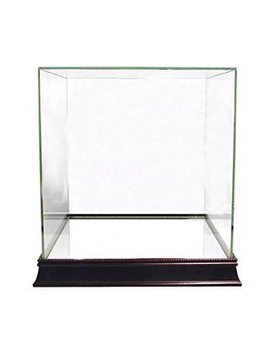 Steiner Sports Memorabilia Glass Basketball Case