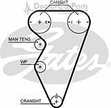 Cam Timing Belt, Land Rover Freelander Mk1 00>06 1.8 Petrol Opt1/2