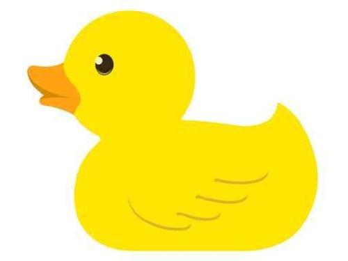 Rubber Duck Art