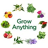 Grow Anything --seeds Pack For Garden Lovers By Seedscare India (Chamomile, Coriander, Petunia, Jalapeno, Basil...