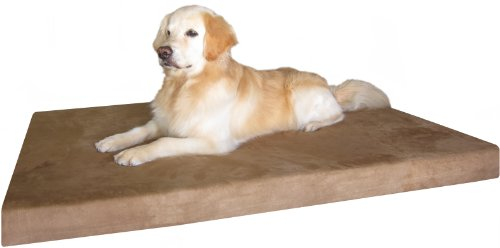 Dog Bed: 55SP XXL Extra Large 55