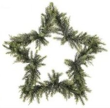 "24"" Mixed Green Iced Star Artificial Christmas Wreath"