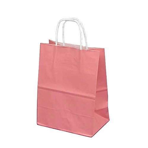 Pink Medium Paper Party Bags With Handles And White Gift Tags, Set Of 12, 8 X 5 X10 Inches front-85570
