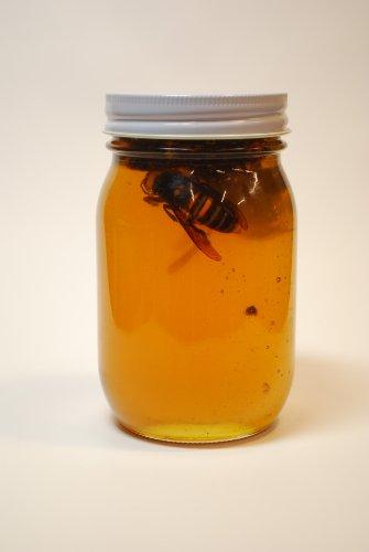 スズメバチの蜂蜜漬け 600g  国産はちみつ  送料無料