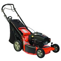LM21S - Ariens Classic LM21S (21