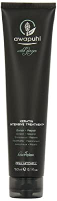 Paul Mitchell Awapuhi Wild Ginger Keratin Intensive Hair Treatment, 5.1 Ounce