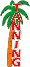 Palm Tree Lighting front-427577