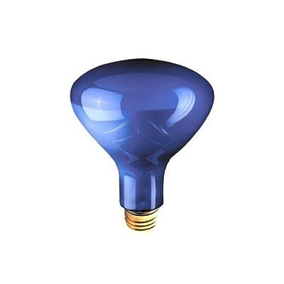 Bulbrite 860197 75R30PG 75-Watt Plant Grow Light Bulb with A-Shape, 6-Pack by Bulbrite