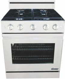 Dacor Dr30Gifsng Distinctive 30 Stainless Steel Gas Slide-In Sealed Burner Range - Convection front-37383