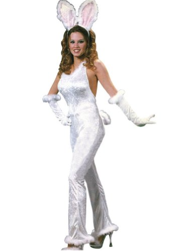 Bunny Sexy Velvet Md-Lg Adult Womens Costume