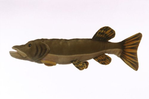 "10"" Northern Pike Fish Plush Stuffed Animal Toy by Cabin Critters"