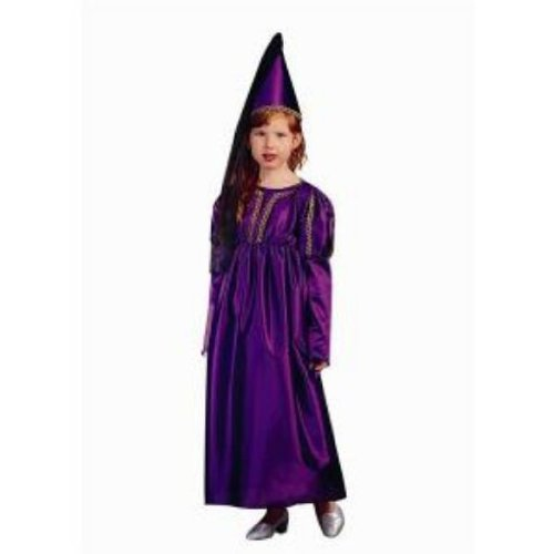 RG Costumes 91066-BL-L Medieval Princess Blue Costume - Size Child-Large