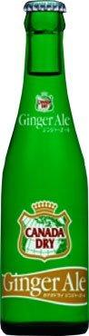 207mlx24-questo-business-per-la-coca-cola-canada-dry-ginger-ale-bottiglia-regolare