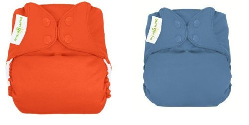 Bumgenius 4.0 Snap Closures All-In-One One-Size Cloth Diapers - 2Pk (Moonbeam/Sassy) front-576048