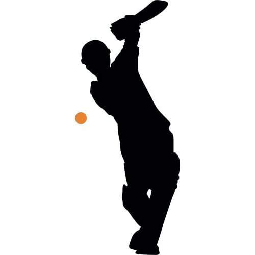 Amazon.com - Wall Wall Decals Cricket Silhouette - 4 - 24 inches x 10