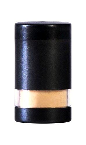 SUSAN POSNICK カラーフローレフィル Bronzer 4g