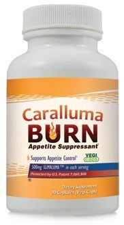 Caralluma Burn Appetite Suppressant Diet Pill 3 ~ 30 Capsule Bottles