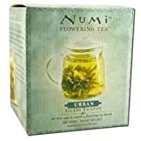 Numi Tea Glass Teapot Urban 1x 1Each