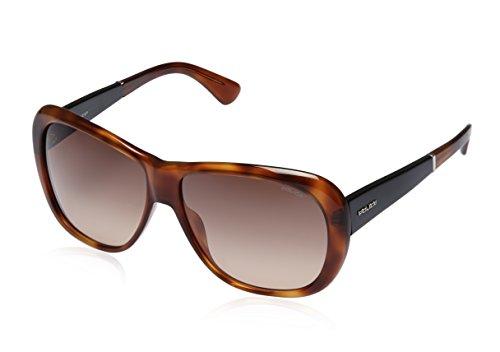 Police Police Oval Sunglasses (Demi Brown) (S1729|711|60)