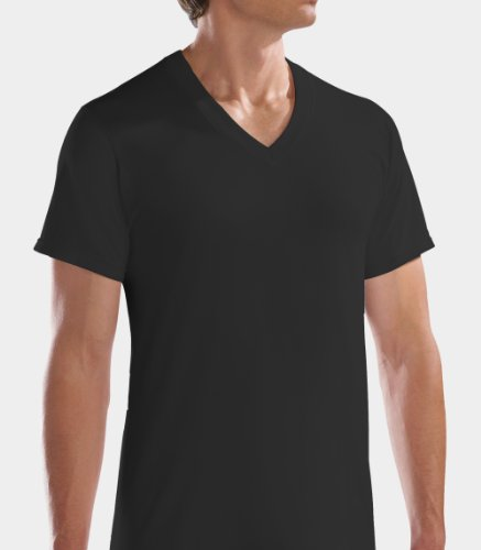 Fruit of the Loom Men's 4pk Black/Gray V-Neck T-Shirt