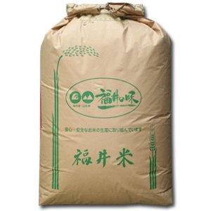 22年産 福井県産 検査一等米 コシヒカリ 玄米30kg