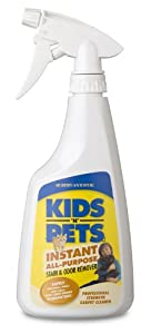 KIDS N PETS Stain and Odor Remover, 16-Ounce