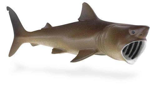 Safari Ltd Wild Safari Sea Life Basking Shark