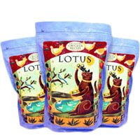 See Lotus Wholesome Chicken Dry Cat Food 12lb