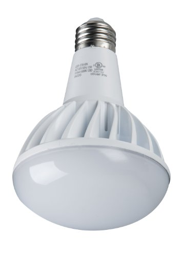 Light Efficient Design Led-1739-30K High Power Led R30 12W 75W Replacement 3000K Ul Rated, Energy Star Light Bulb