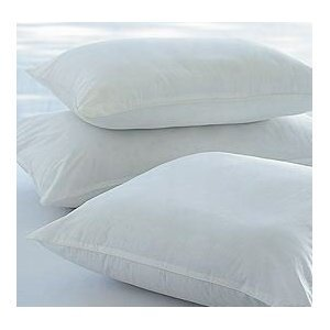 "Pack Of 2 - 45 x 45 cm, 18"" x 18"" Non Allergenic Cushion Inners"