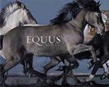 Equus by Tim Flach (2008)