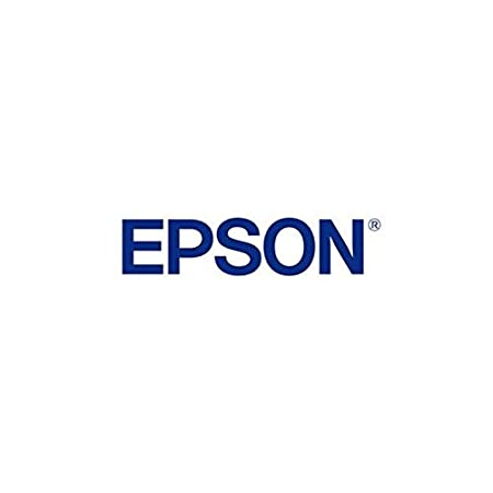 Epson Ink cart.boxed cyan 110ml, 1103970