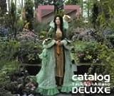 デラックスカタログ(期間限定生産)(DVD付)