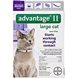Advantage II for Cats (Over 9 lbs- 6 Pack)