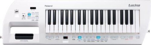 Roland Lucina AX-09 37-Key Synthesizer