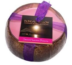 Hawaiian Coconut Candle Plumeria Scented