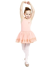 Royal Ballet Cotton Rich Embroidered Floral Mesh Ballet Dress